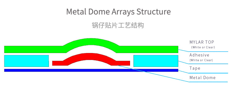 METAL DOME ARRAY STRUCTURE